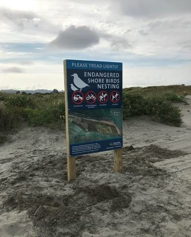 Beaches Bylaw sign unlawfully removed in Ōhope
